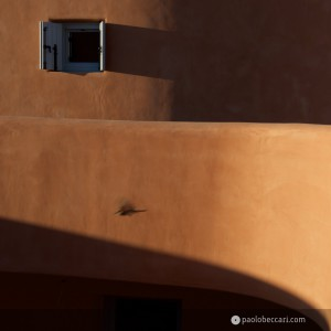 Sardinia:Villas by Fuksas in Is Molas - detail with flying bird